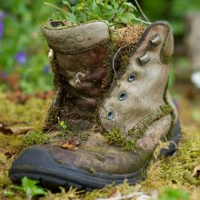 Shoe in the Burren