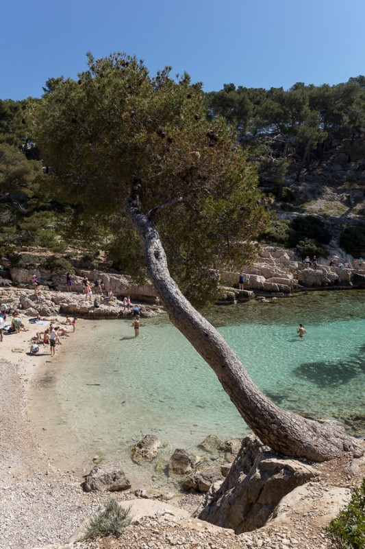 Calanque de Port-Pin II