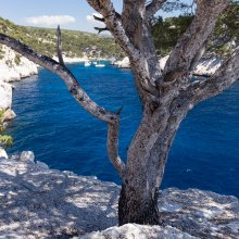 Calanque de Port-Pin V